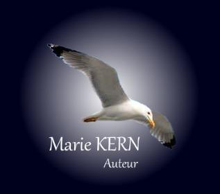 logo site internet marie kern auteur