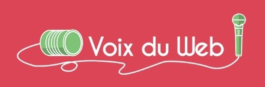 Voix-du-Web-Logo-ingenieweb